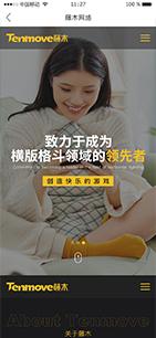 藤木网络科技官网建设